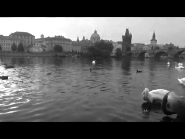 BRUTTO - Огоньки [Live | Acoustic]