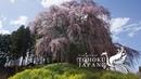 Spring Beauty in Tohoku, Japan 4K (Ultra HD) - 東北の春   JNTO