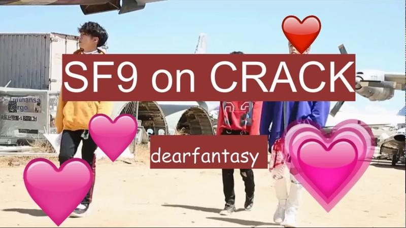 SF9 crack 1 top man Zuho