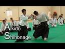 Aikido Ushiro Ryokata dori SHIHONAGE in Monaco