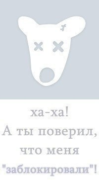 Руслан Захаров, 6 мая 1998, Серпухов, id167018411