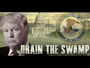 Cat News- Swamp Review- The Storm Is Here