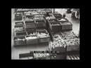 BUILDING A TANK WWII M 3 MEDIUM TANK PRODUCTION DETROIT TANK ARSENAL FORT KNOX