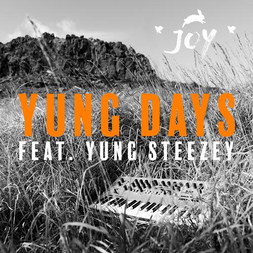 Joy альбом Yung Days (feat. Yung Steezey, yippyskippyrosie, Lucy Hiku)