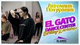El Gato Dance Center Birthday Workshops Angelina Poturaeva