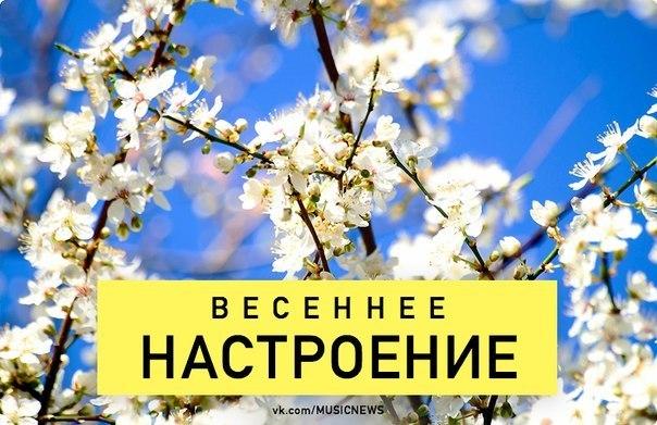 http://cs619828.vk.me/v619828396/bab/sJczd-DLAAY.jpg
