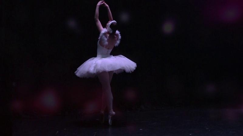 Swan ballet - Dying Swan