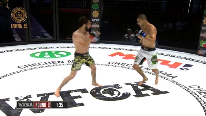 Всемирная бойцовская лига Ахмат провела в Грозном турнир по смешанным единоборствам - WFCA 49.