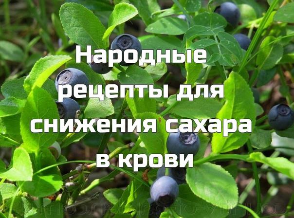 Противодиабетический сбор состоит из семи растений: лист черники, створки