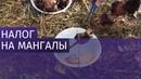 В РФ придумали новый налог на одноразовую посуду и мангалы 15 10 2018