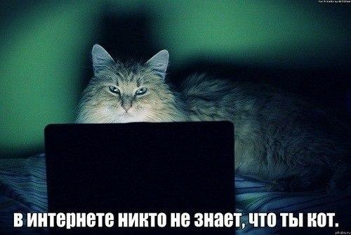 http://cs320621.vk.me/v320621073/a080/C_P0nTaZy5I.jpg