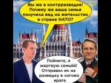 Зачем семьям чиновников вид на жительство в стране НАТО?