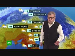 Прогноз погоды на 19 октября