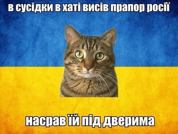 Выборы на Донбассе и его особый статус означают признание Украиной неучастия России в конфликте на востоке, - Сыроид - Цензор.НЕТ 3095