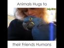 Rispetto per tutti gli Animali
