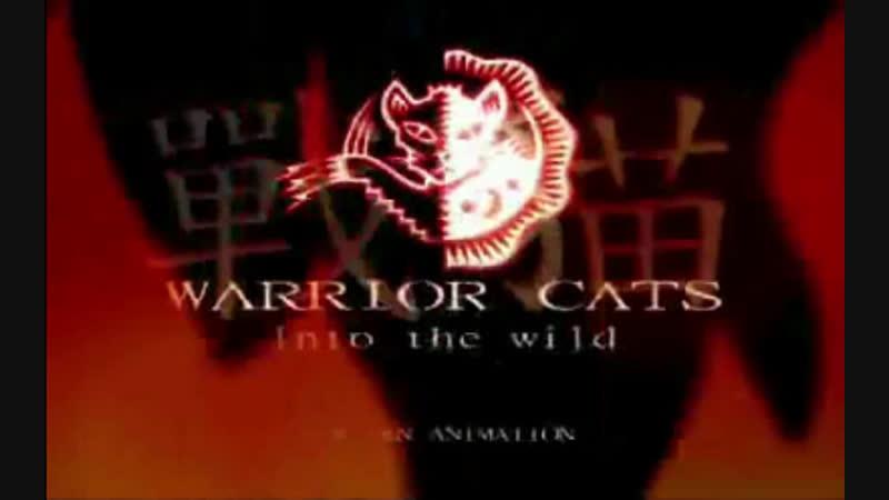 AMV Warriors Cats На заказ
