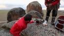 Подготовка к обряду камлания с Шаманом Лазо Монгушем