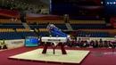 NAGORNYY Nikita (RUS) - 2018 Artistic Worlds, Doha (QAT) - Qualifications Pommel Horse