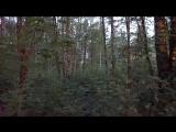 Первый тест моей новой камеры Sony A7S II в темноте