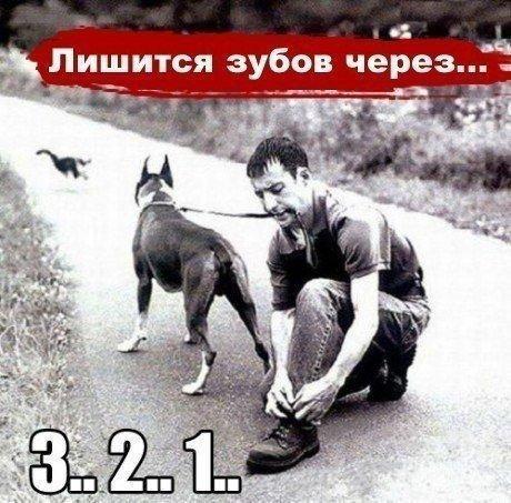 https://pp.vk.me/c7008/v7008437/50147/k_QiCHgacH4.jpg