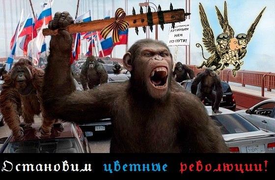 Миссия ОБСЕ на Луганщине провалена: договоренности с Козицыным о спасении Трехизбенки сорваны, - Москаль - Цензор.НЕТ 6757