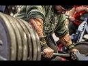 BRING THE PAIN - Bodybuilding motivation