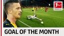 Marco Reus - November 2018s Goal of the Month Winner