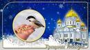 19 января January 19 Epiphany ProShow Producer