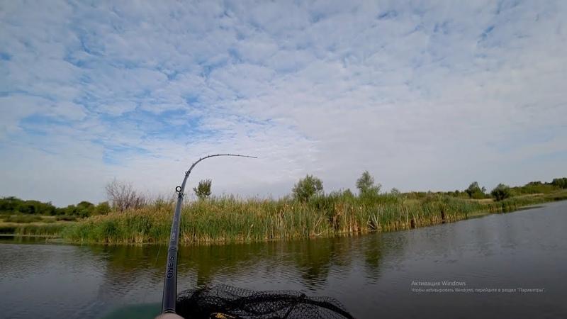 Я не ожидал увидеть столько щуки в этом маленьком прудуУловистая приманка!Рыбалка на спиннинг.