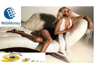 Webmoney вебмани (платежная система). Регистрация по-новому