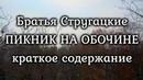 Братья Стругацкие — ПИКНИК НА ОБОЧИНЕ (краткое содержание)
