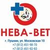 Пушкинская ветеринарная клиника