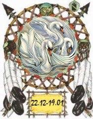 Индейский гороскоп - Белый Гусь с 22 декабря по 19 января