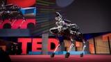 Meet Spot, the robot dog that can run, hop and open doors Marc Raibert
