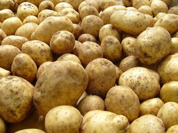 Картофель «по-русски». Как это