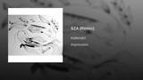 SZA (Remix)