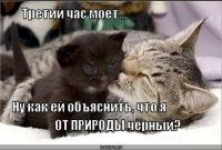 Егор Темченко, Запорожье, id143322789