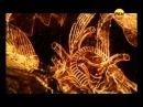 Секретные территории.Драконы-звездная расса.mkv