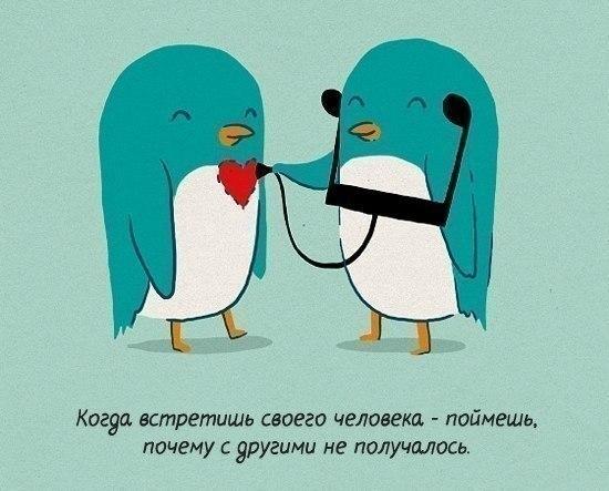 http://cs408726.vk.me/v408726271/6302/PXZyvFxIR-E.jpg