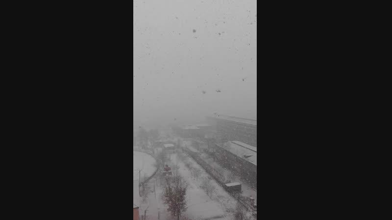 Первый снег 20.10.2018
