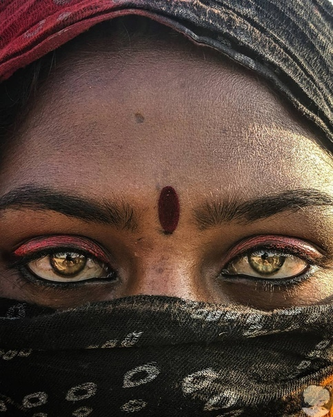 Лица Индии.