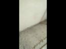передвижка стен Елабуга