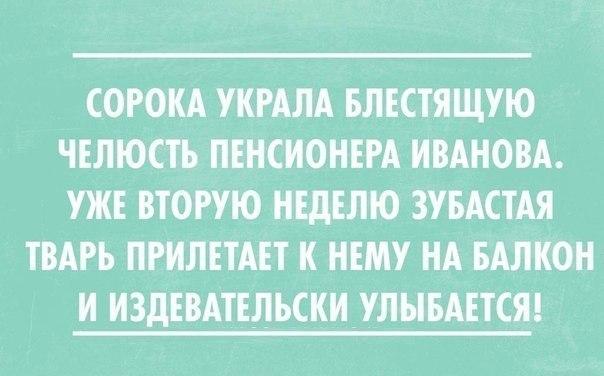http://cs14101.vk.me/c7008/v7008441/20d7b/P4GVyQf_Jk0.jpg
