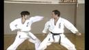 Karate Kihon Ippon Kumite 10 19