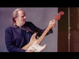 Walter Trout-She Steals My Heart Away