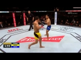 Видео боя UFC Ренан Барао  Филлип Новер