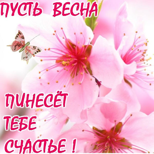 Фото №298187144 со страницы Павла Сударчикоффа