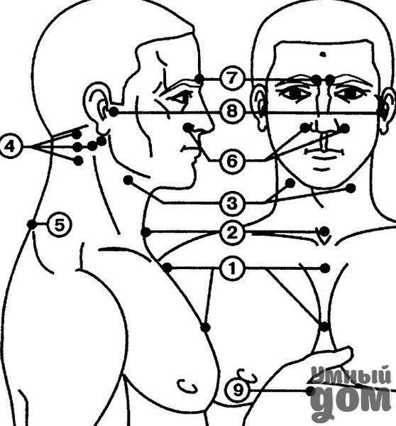 Точечный массаж для повышения иммунитета Массажные зоны, связанные с регуляцией иммунитета и закаливанием организма, изображены на рисунке. Всего таких точек девять. Основные зоны (2-4 и 6-8) сосредоточены в области лица и шеи. Дополнительные (1, 5 и 9) находятся сзади в области позвоночника, на передней поверхности грудной клетки и на руках. 1. на грудине. При воздействии на нее улучшается кроветворение, кровоснабжение пищевода, трахеи, бронхов и легких; 2. регулирует защитную функцию…