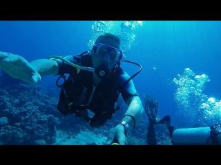 Прогулки по минскому морю ) #diving #divers #snorkeling