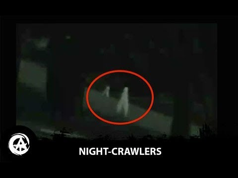 The Fresno Nightcrawlers | Most Convincing Footage of Alien Life Caught on Tape?